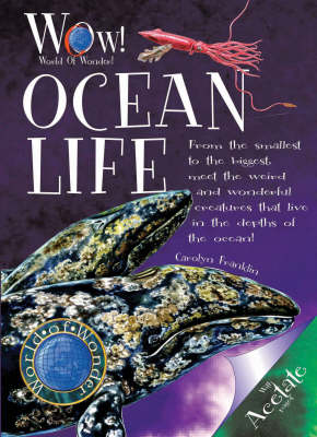 Ocean Life by Carolyn Franklin