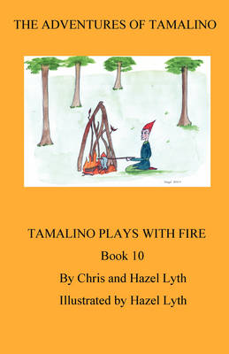 The Adventures of Tamalino Tamalino Plays with Fire by Christopher Lyth, Hazel Lyth