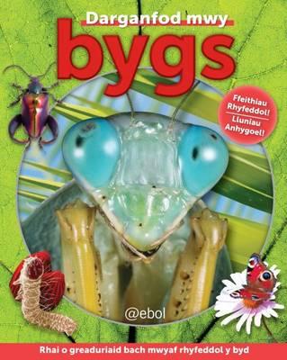 Bygs by