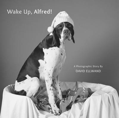 Wake Up, Alfred! A Photographic Story by David Ellwand, David Ellwand