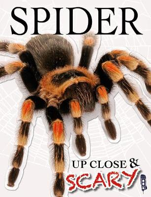 Up Close & Scary Spider by Louise & Richard Spilsbury