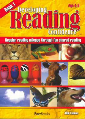 Junior Reading Skills Book 4 by Geoff Frolich