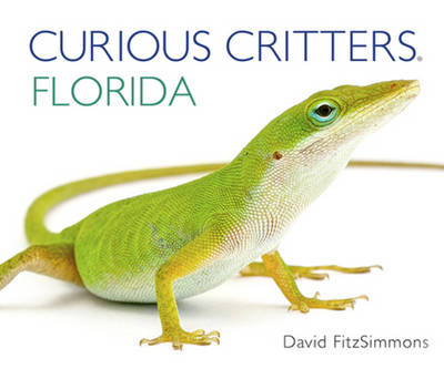 Curious Critters Florida by David Fitzsimmons