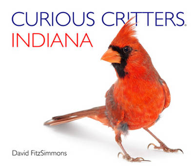 Curious Critters Indiana by David Fitzsimmons