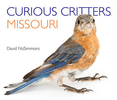 Curious Critters Missouri by David Fitzsimmons