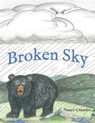Broken Sky by Nancy Crumley