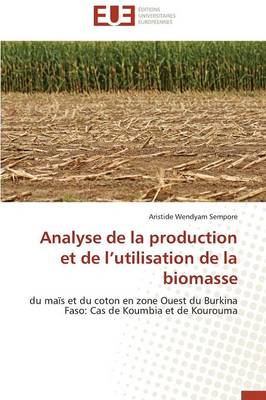 Analyse de La Production Et de L Utilisation de La Biomasse by Sempore-A