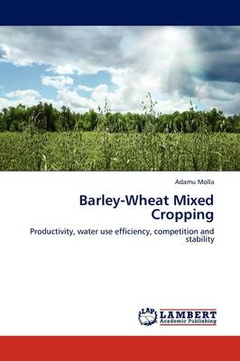 Barley-Wheat Mixed Cropping by Adamu Molla