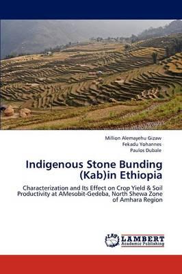 Indigenous Stone Bunding (Kab)in Ethiopia by Million Alemayehu Gizaw, Fekadu Yohannes, Paulos Dubale