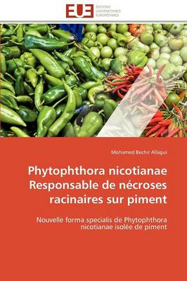 Phytophthora Nicotianae Responsable de Necroses Racinaires Sur Piment by Allagui-M
