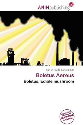 Boletus Aereus by Norton Fausto Garfield