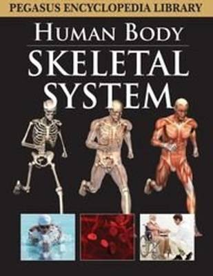 Skeletal System by Pegasus