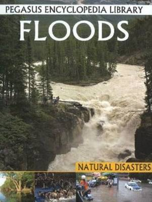 Floods Pegasus Encyclopedia Library by Pallabi B. Tomar