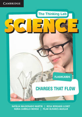 Charges That Flow Flashcards by Natlia Maldonado Martin, Rosa Bergad Llobet, Nuria Carrillo Monso, Pilar Olivares Aguilar