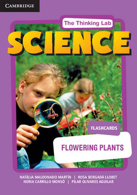 Flowering Plants Flashcards by Natlia Maldonado Martin, Rosa Bergad Llobet, Nuria Carrillo Monso, Pilar Olivares Aguilar