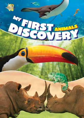 My First Discovery Animals by