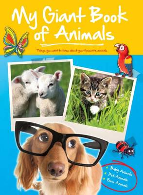 Big Book of Animals Baby Farm Pets by