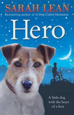 Hero by Sarah Lean
