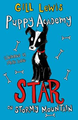 Puppy Academy: Star on Stormy Mountain by Gill Lewis