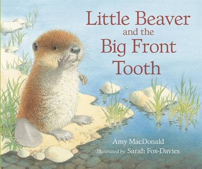 Little Beaver and the Big Front Tooth by Amy MacDonald