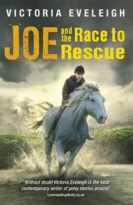 Joe and the Race to Rescue A Boy and His Horses by Victoria Eveleigh