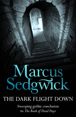 Dark Flight Down by Marcus Sedgwick