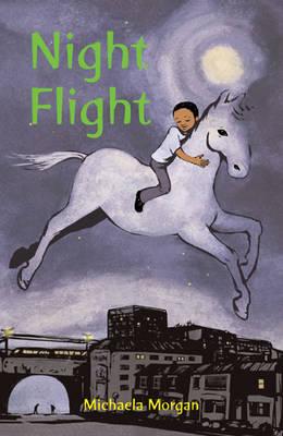 Night Flight by Michaela Morgan
