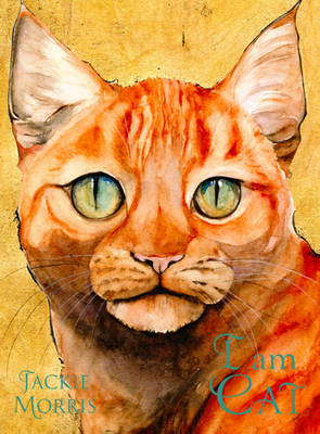I am Cat by Jackie Morris