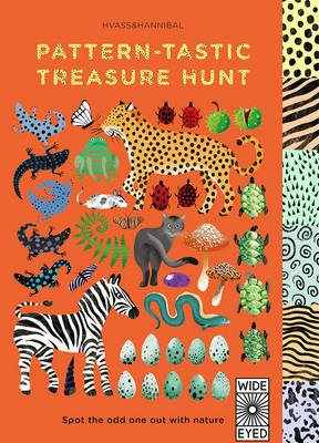 Pattern-Tastic Treasure Hunt Learn Your Colours with Nature by Nan Na Hvass