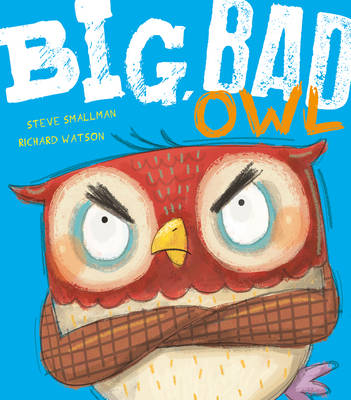 Big, Bad Owl by Steve Smallman