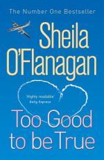 Too Good To Be True by Sheila O'Flanagan
