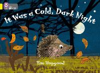 It Was a Cold Dark Night Band 03/Yellow by Tim Hopgood