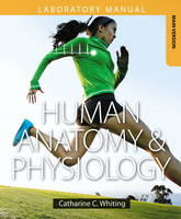 Human Anatomy & Physiology Laboratory Manual Making Connections, Main Version Plus masteringA&P with Etext -- Access Card Package by Catharine C. Whiting