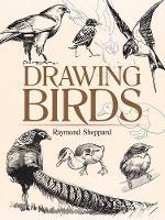 Drawing Birds by Raymond Sheppard