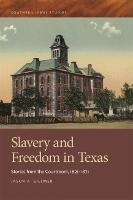 Slavery and Freedom in Texas Stories from the Courtroom, 1821-1871 by Jason A. Gillmer, David Wasserboehr