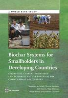 Biochar Systems for Smallholders in Developing Countries Leveraging Current Knowledge and Exploring Future Potential for Climate-Smart Agriculture by Sebastian M Scholz, Thomas Sembres, Kelli Roberts, Thea Whitman
