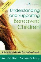 Understanding and Supporting Bereaved Children A Practical Guide for Professionals by Andy McNiel, Pamela Gabbay