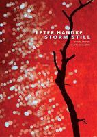 Storm Still by Peter Handke