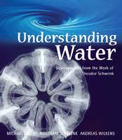 Understanding Water Developments from the Work of Theodor Schwenk by Andreas Wilkens, Wolfram Schwenk, Michael Jacobi