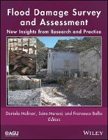 Flood Damage Survey and Assessment New Insights from Research and Practice by Daniela Molinari