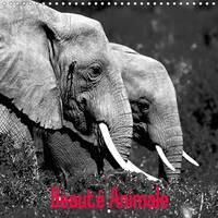 Beaute Animale 2017 Notre Planete Est Riche De Spectacles Naturels Uniques by Dominique Leroy