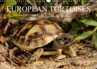 European Tortoises / UK-Version 2018 The Pictures in That Calendar Show Tortoises of Southern Europe in Their Habitats by Benny Trapp