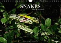 Snakes / UK-Version 2018 Snakes, Fascinating Reptiles, Snake Calendar, Reptile, Benny Trapp by Benny Trapp