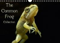 The Common Frog Collection 2018 Informed Collection of Images from the Lifecycle of the Common Frog. by Glenn Upton-Fletcher