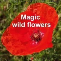Magic Wild Flowers 2018 Not Often Observed, Yet Beautiful and Exceptional by Uwe Bernds