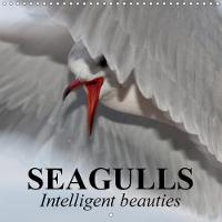 Seagulls Intelligent Beauties 2018 The Very Clever Creatures by Elisabeth Stanzer
