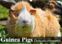 Guinea Pigs Delicate Creatures 2018 Guinea Pigs are Sociable and Inquisitive Animals by Elisabeth Stanzer