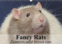 Fancy Rats Domesticated Brown Rats 2018 Curious, Intelligent and Always Up for Some Fun by Elisabeth Stanzer