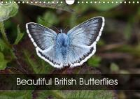 Beautiful British Butterflies 2018 Evoking British Butterflies at Their Finest by Chris Downes