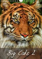 Big Cats2 2018 Magnificent Felines from Around the World by Dalyn
